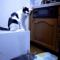 【猫動画】オレはやってニャい!カメラは見た、冤罪の瞬間!!