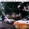 【猫動画】猫が乗ったまま車が発進?その後の猫の行動とは・・・!?