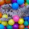 【猫動画】猫の反応が!?ボールプールに入った猫の反応とは・・・!?