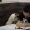 【猫動画】一緒にできるか!?猫たちと仕事ができるか検証すると・・・!?