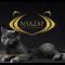 【猫ネタ】猫も結果にコミットする!?最高の美猫トレーニングの「NYAZAP(ニャーザップ)」とは・・・!?