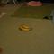 【猫動画】動きがスゴい!バナナ相手に挑発する猫 パート1