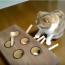 【猫動画】猫がセルフもぐらたたき!?猫が自分でする「もぐらたたき」で遊ぶと・・・!?