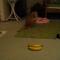 【猫動画】動きがスゴい!バナナ相手に挑発する猫 パート2
