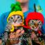 【猫ネタ】猫版PPAP!?キャット・アップル・パイナップル・キャットとは・・・!?