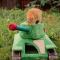 【猫動画】インパクト抜群!?ロシアで開発された猫用兵器の「戦車」とは・・・!?