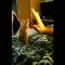 【猫動画】こりゃカワイイ!!ハイタッチ後の子猫のかわいすぎるリアクションとは・・・!?
