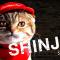 【猫CM】猫の日に発表!?ピザキャット店のリニューアルと新人猫SHINJINとは・・・!?