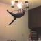 【猫動画】猫のジャンプ41連発!おもしろ猫ジャンプ集