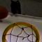 【猫動画】プロ並み!?バスケットボールでシュートを決めまくる猫
