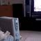 【猫動画】猫に見えない!!テレビに夢中な猫に声をかけると・・・
