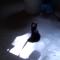 【猫動画】子猫と影は、やはり鉄板!?ふわふわの黒猫が自分の影と戦う様子が・・・!?